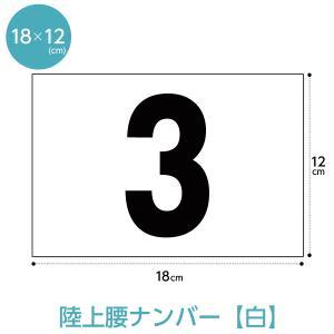 陸上ゼッケン レーンナンバーカード(腰用W18cm×H12cm)