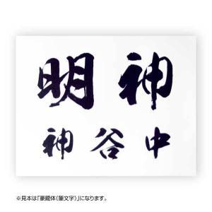 卓球ゼッケン2段組(デザイン書体) W25cm×...の商品画像