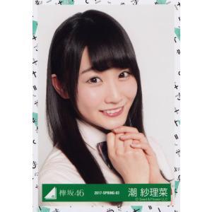 欅坂46 潮紗理菜 けやき坂46(ひらがなけやき) Vol.2 生写真 ヨリ