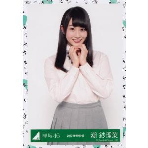 欅坂46 潮紗理菜 けやき坂46(ひらがなけやき) Vol.2 生写真 チュウ