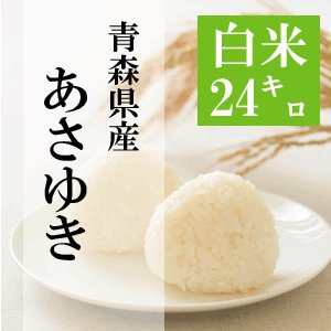 米 24kg 白米 8kg×3袋小分け 令和2年 青森県産 あさゆき 送料無料|maeda-rice