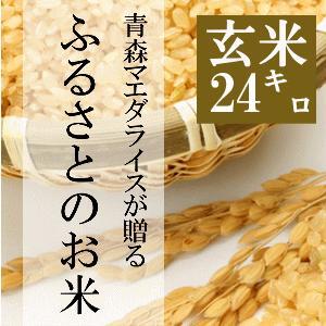 米 24kg 玄米 8kg×3袋小分け 令和2年 青森県産 ふるさとのお米|maeda-rice