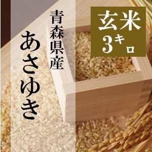 米 3kg 玄米 令和2年 青森県産 あさゆき 送料無料 日本郵政レターパックプラス発送 対面配達 代引き不可 日時指定不可|maeda-rice