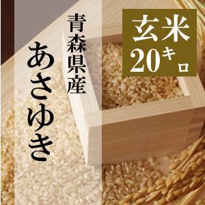 米 20kg 玄米 10kg×2袋小分け 令和2年 青森県産 あさゆき 送料無料|maeda-rice