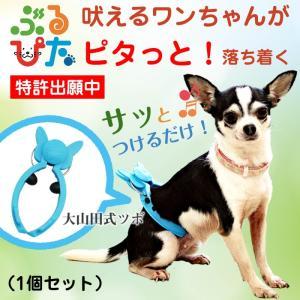 犬 のしつけに ぶるぴた 1個 吠える犬、走りまわる犬がピタリと落ち着く トリマーの必需品 (使い方・大山田式 犬の しつけ DVD付)日本製|maedaya