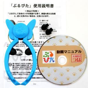 犬 のしつけに ぶるぴた 1個 吠える犬、走りまわる犬がピタリと落ち着く トリマーの必需品 (使い方・大山田式 犬の しつけ DVD付)日本製|maedaya|02