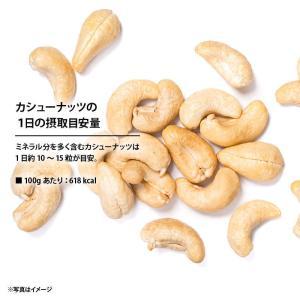 素焼きカシューナッツ 450g無添加 無塩 ロースト 素焼きソフトな食感と自然の甘味が決め手の人気カシューナッツ 栄養まるごと無添加焙煎 買い回り maedaya 07