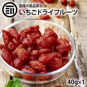 おつまみ 珍味 完全 国産 ちょっと贅沢な プレミアム リッチ セミ ドライフルーツ いちご 苺 1袋(50g) おやつ お菓子作り  トッピング ポイント消化 maedaya