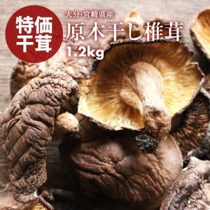 新商品 国産 原木 椎茸 大分産 宮崎産 訳あり 無選別 原木干ししいたけ 干し椎茸 1.2kg(80g×15) お試し 原木椎茸 買い回り 買い回り|maedaya