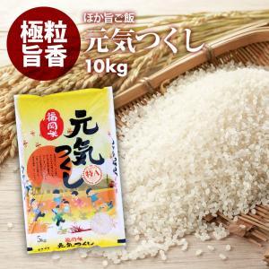 無洗米 プロが選ぶ一等 米 食味ランクA 元気つくし 10kg 平成30年産 精米 福岡県産 買い回り|maedaya