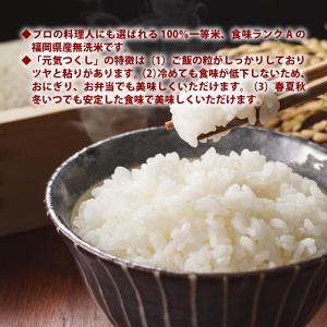 無洗米 プロが選ぶ一等 米 食味ランクA 元気つくし 10kg 平成28年産 精米 福岡県産|maedaya|03