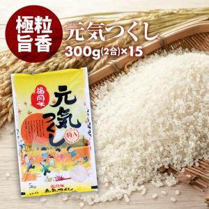 無洗米 プロが選ぶ一等 米 食味ランクA 元気つくし 2合 15パック 平成30年産 精米 福岡県産|maedaya