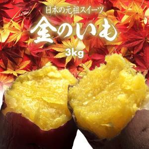国産 有機栽培 焼き芋 極上 さつまいも 金のいも 3kg 最高熟成 糖度40~70度 宮崎県 簡単 時短調理 冷凍焼き芋 完熟 焼き芋 スイーツ アイス クール|maedaya