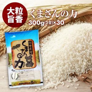 無洗米 小分けパック お 米 新鮮 長持ち 食味ランク特A くまさんの力 2合 30パック 平成29年産 精米 福岡県産|maedaya