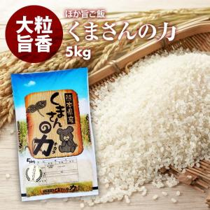 無洗米 プロが選ぶ一等 米 食味ランク特A くまさんの力 5kg 平成29年産 精米 福岡県産 買い回り|maedaya