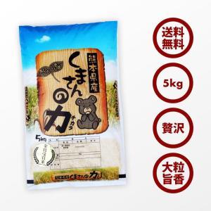 無洗米 プロが選ぶ一等 米 食味ランク特A くまさんの力 5kg 平成29年産 精米 福岡県産|maedaya|02