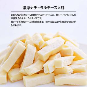 おつまみ 珍味 国産 一口 ナチュラル 濃厚 チーズ 3袋 110g×3 鱈との白身サンド ふぞろい チーズ おやつ に 買い回り 宅飲み|maedaya|03