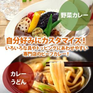 新商品 カレー専門店の ビーフカレー 8食セット 甘口 レトルトカレー カツ ハンバーグ エビフライ 野菜 うどんなど お好みの具やトッピングにあわせやすい maedaya 06