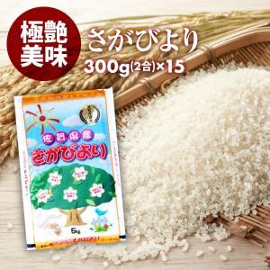 無洗米 プロが選ぶ厳選一等 米 食味ランク 特A さがびより 2合 15パック 平成30年産 精米 佐賀県産|maedaya