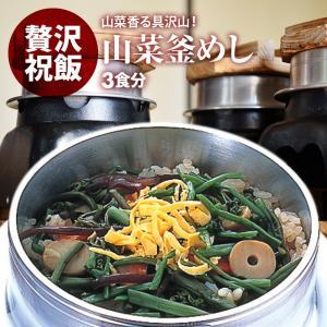 山菜 釜飯 の具 ( 3人前 ) 水を使わず即席で美味しい 早炊き米 ・ 具 入り 釜めし の素 セット 料亭の味 炊き込みご飯 日本製 国産 maedaya