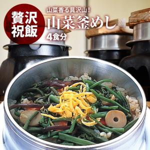 山菜 釜飯 の具 ( 4人前 ) 水を使わず即席で美味しい 早炊き米 ・ 具 入り 釜めし の素 セット 料亭の味 炊き込みご飯 日本製 国産 maedaya