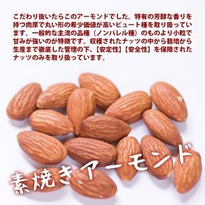 新商品 ナチュラル トレイルミックス 250g 生くるみ 素焼きアーモンド 素焼きカシューナッツ ミックスレーズン ミックスナッツ 無塩 オメガ3脂肪酸 Rich Life|maedaya|06
