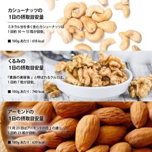 新商品 ナチュラル トレイルミックス 250g 生くるみ 素焼きアーモンド 素焼きカシューナッツ ミックスレーズン ミックスナッツ 無塩 オメガ3脂肪酸 Rich Life|maedaya|10