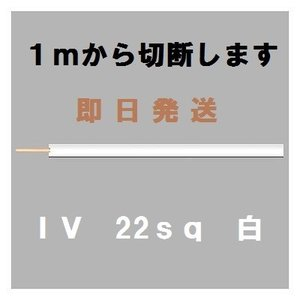 IV 22sq 白 600Vビニル絶縁電線 1mから切断します|maegawadenki2