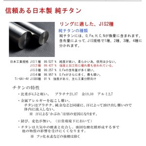 チタンリング TIRFL04P ペア、マリッジリング(結婚指輪)2本セット コンピューター彫刻無料 maestrokan 04