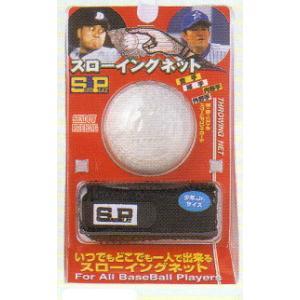 シュアプレイ(Sure Play) 野球トレーニング用品 スローイングネット(軟式C号ボール付)少年用|maesupo