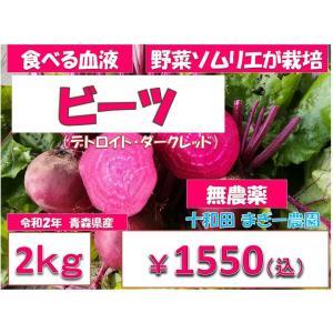 西洋野菜 ビーツ 2kg 無農薬野菜 野菜ソムリエが栽培 ふぞろい  令和元年産 青森産 テーブルビート 農園直送