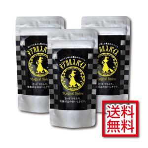 マジカルスパイス おうちで使いまくりセット(袋110g×3袋 送料込)