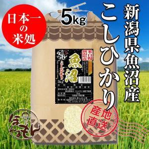 お米 5kg 新潟県魚沼産コシヒカリ 【新米】令和2年産 日本一の米どころ