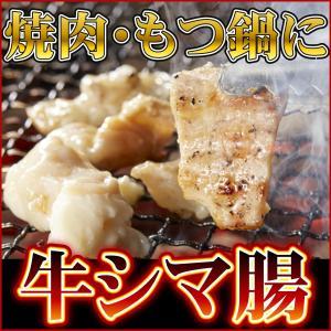 牛ホルモン シマチョウ 大腸 500gパック(アメリカ産)テッチャン 焼肉