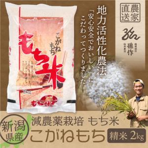 もち米 こがねもち 精米 2Kg 1等米|magosaku-food