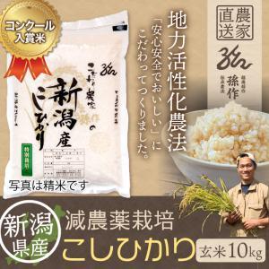 減農薬栽培米 コシヒカリ 玄米 10Kg 新潟県産 こしひかり|magosaku-food