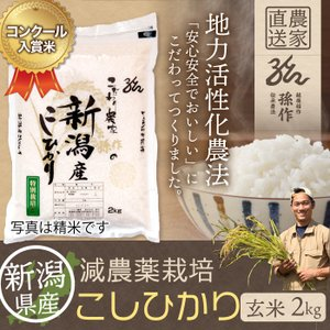 減農薬栽培米 コシヒカリ 玄米 2Kg 新潟県産 こしひかり|magosaku-food