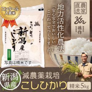 減農薬栽培米 コシヒカリ 精米 5Kg 新潟県産 こしひかり|magosaku-food