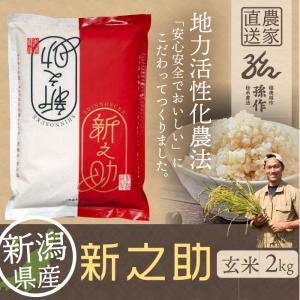 新之助 玄米 2kg しんのすけ 新潟県産 お米 げんまい|magosaku-food