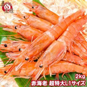赤海老 あかえび アカエビ 2kg(業務用2kg×1箱)