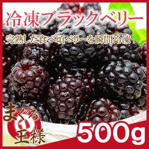 冷凍 ブラックベリー 500g×1 冷凍フルーツ ヨナナス