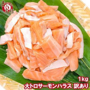 サーモン 大トロ ハラス 切り落とし 1kg (500g×2)(訳あり わけあり ワケあり)