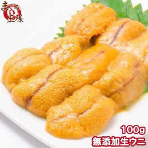 生ウニ 生うに 冷凍 無添加 天然 100g  (ウニ うに 雲丹)