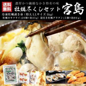 牡蠣尽くしセット 宮島 冷凍 広島県産 牡蠣むき身 カキグラタン カキフライ maguro441
