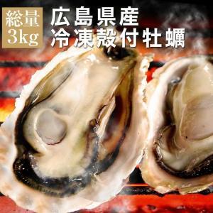 広島県産 冷凍殻付牡蠣 特大LLサイズ 3kg 約20〜23個入 4〜5人前 バーベキュー BBQ カンカン焼き追加用として人気 カンカンは付いてません|maguro441