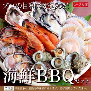 海鮮 バーベキュー セット 赤海老 殻付き 牡蠣・帆立 大アサリ サザエ 2〜3人前 貝類 BBQ 家キャン|maguro441