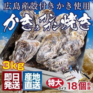特大LLサイズ 殻付き 冷凍 牡蠣 カンカン焼きセット 3kg 海鮮 バーベキュー かんかん焼き 16個前後 ガンガン焼き BBQ アウトドア 家キャン|maguro441
