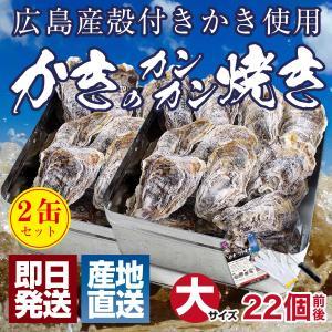 お得 2缶セット 牡蠣 殻付き 冷凍 カンカン焼き 広島県産(1セット辺り:約3kg、26個前後 軍手 ナイフ 調理説明書付き gd230|maguro441