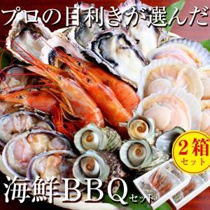 お得 2箱セット 海鮮 バーベキュー セット 赤海老 殻付き 牡蠣・帆立 大アサリ サザエ 4〜6人前 貝類 BBQ 家キャン|maguro441