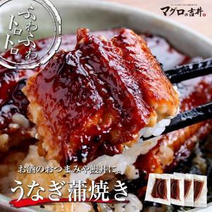ウナギ蒲焼き 海鮮 セット ギフト 2〜3人前 海鮮福袋 お取り寄せ 送料無料|maguro441